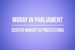 Embedded thumbnail for International Trade Questions - Scotch Whisky GI Protections - 28th June 2018